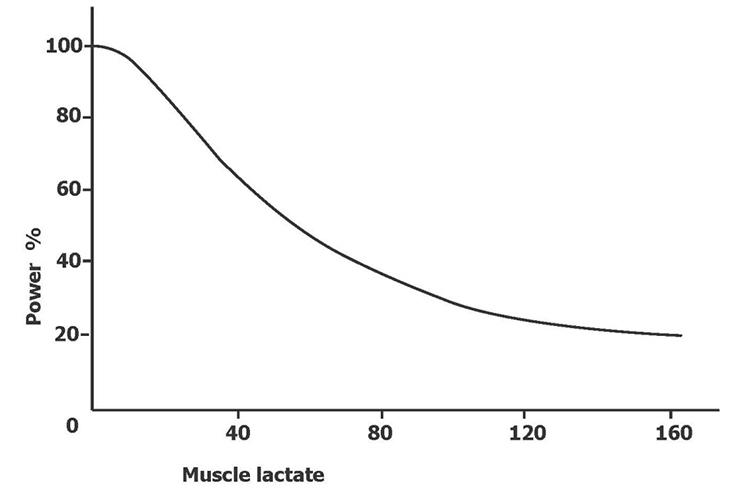 Acide lactique et la puissance